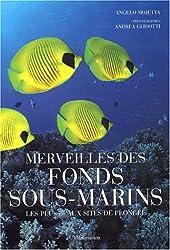 Merveilles des fonds sous-marins