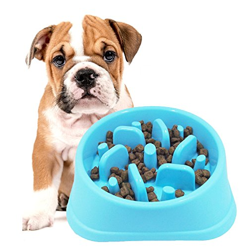 Slow Feeder Bowl  Dotpet Fun Interactive Feeder Bloat Stop Dog Bowl Preventing Feeder Anti Gulping Drink Water Bowl Fan Shape Healthy Eating Diet For Puppy Dog Pet  Blue