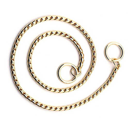 SGODA Gold Dog Chain Collar Choke Pet Training Snake Collar with Heavy Links, 16 in, 3 mm
