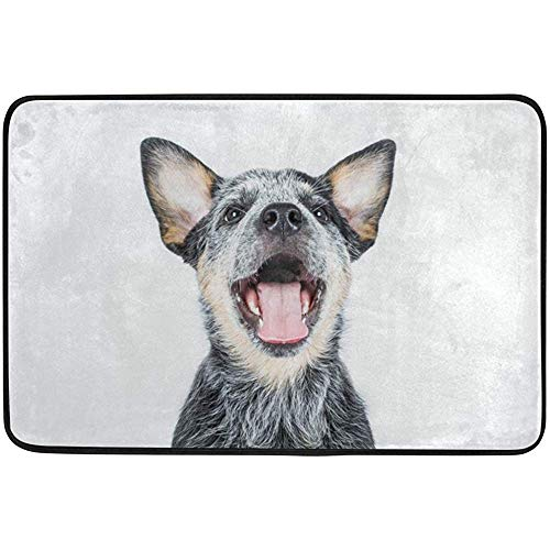 Staromil Doormats Area Rug for Indoor Outdoor Use, Australian Cattle Puppy Dog Entry Front Door Mat Kitchen Bathroom Non Slip Rug 23.6x15.7 Inches ()