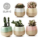 SUN-E 5 in Set 2.2 Inch Container Planter Ceramic Flowing Glaze Five Color Base Serial Set Succulent Plant Pot Cactus Plant Pot Flower Pot Perfect Gift Idea