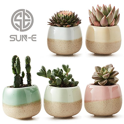 SUNE 5 in Set 22 Inch Container Planter Ceramic Flowing Glaze Five Color Base Serial Set Succulent Plant Pot Cactus Plant Pot Flower Pot Perfect Gift Idea