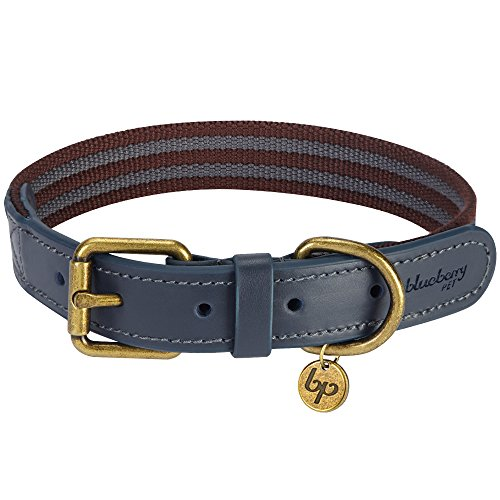 Blue Leather Dog Collar - Blueberry Pet 8 Colors Polyester Fabric and Soft Genuine Leather Webbing Dog Collar in Noir Grey and Burgundy, Medium, Neck 15