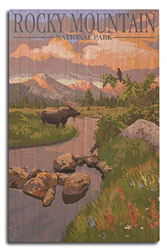 (Lantern Press Rocky Mountain National Park, Colorado - Moose and Meadow (10x15 Wood Wall Sign, Wall Decor Ready to Hang))