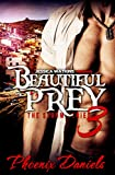 Beautiful Prey 3: The Storm Series: BWWM Romance