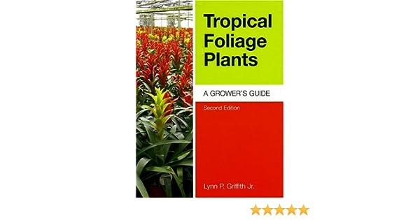 Tropical Foliage Plants A Growers Guide