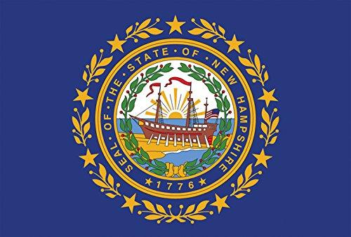 Toland Home Garden New Hampshire State Flag 12.5 x 18 Inch Decorative USA Garden Flag ()