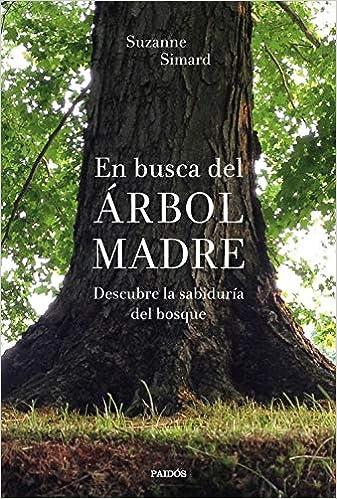 En busca del Árbol Madre de Suzanne Simard