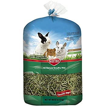 Kaytee Timothy Hay, 96-oz bag