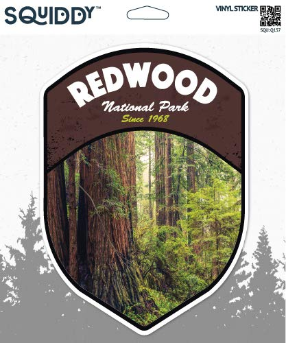 Squiddy Redwood National Park - Vinyl Sticker Decal for Phone, Laptop, Water Bottle (3