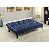 Coaster 500097 Home Furnishings Sofa Bed, Royal