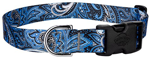 Blue Dog Antiques (Country Brook Petz Blue Paisley Featherweight Deluxe Dog Collar - Extra Small)