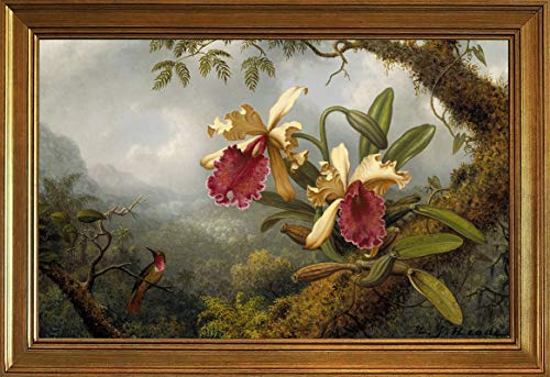 Berkin Arts Classic Framed Martin Johnson Heade Giclee Canvas Print Paintings Poster Reproduction(Heade Orchids and Hummingbird) ()