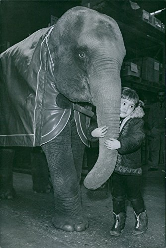 Vintage photo of Child hugging the trunk of the elephant. 1968. ()