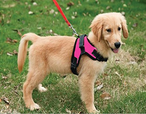 Copatchy No Pull Reflective Adjustable Dog Harness With Handle (medium, Pink) (Dog Harness No Pull Medium)