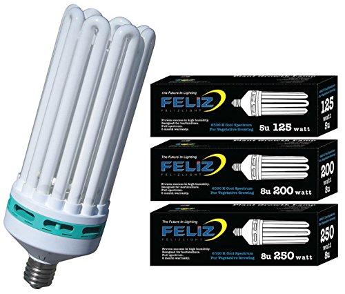 Feliz 6500K Fluorescent Lamp, 250-watt, Blue