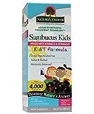 Product review for Nature's Answer Alcohol-Free Sambucus Kids Formula, Original , 8 Fluid Ounce