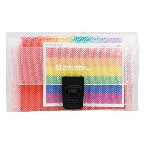 13 Pockets Mini Expanding Files Folder- Expandable Letter Size File Organizer Holder/Accordion File Box Wallet/High Capacity PP Business Document Bag for Office School Home Years Months Storage ()