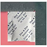 Dry & Dry 2 Gram [6000 Packets] Premium Pure Silica Gel Packets Desiccant Dehumidifier - Food Safe Rechargeable(FDA Compliant) Silica Packets for Moisture