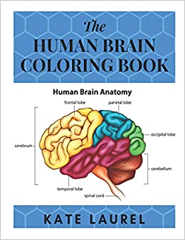 Amazon.com: The Human Brain Coloring Book: Human Brain ...