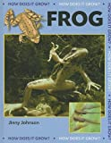 Frog, Jinny Johnson, 1599203553