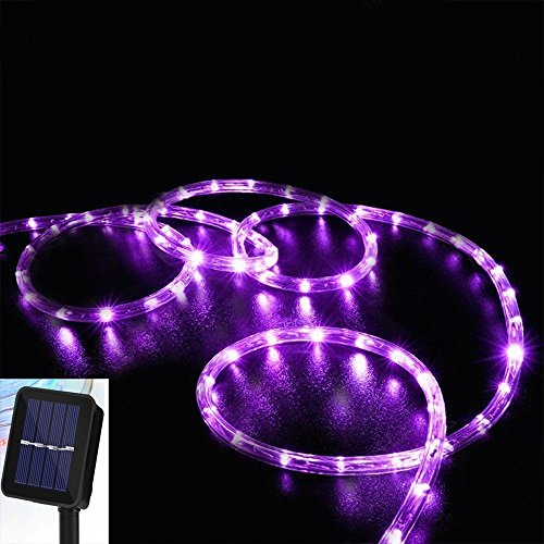 DINOWIN Solar Rope Lights, 39ft/12M 100LED Waterproof Copper Tube Wire String Lights for Garden,Yard, Path, Fence, Stairs, Backyard, Patio Decorative (Purple)
