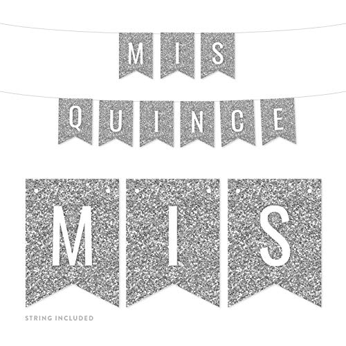 Andaz Press Faux Silver Glitter Birthday Party Banner Decorations, Mis Quince, Approx 5-Feet, 1-Set, Quinceanera 15th Birthday Colored Hanging Pennant Decor]()