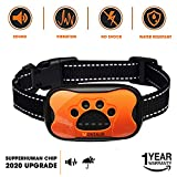 Best Dog Bark Collars - MONTAUR Dog Bark Collar - no Shock Vibration Review