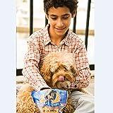KONA'S CHIPS Mini Chicken Chews Dog Treats