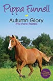 img - for Autumn Glory the New Horse (Tilly's Pony Tails) book / textbook / text book