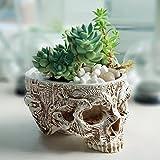 Labu Store Hand Carved Skull Flower Pot Human Skull Bone Bowl Home Garden Decor Halloween Decoration