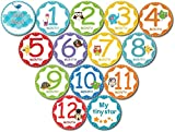 "Premium Baby Monthly Stickers By Tiny Stars, 14 PC Pack of 4"" First Year Growth Milestones Baby Stickers for Boy or Girls, Unique Baby Gift"