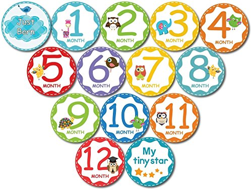 Premium Baby Monthly Stickers By Tiny Stars, 14 PC Pack of 4