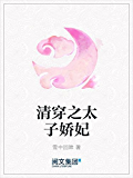 清穿之太子娇妃(阅文白金大神作家作品)