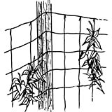 Luster Leaf 869 Vine and Veggie Trellis Net, Green, 5-Feet by 30-Feet