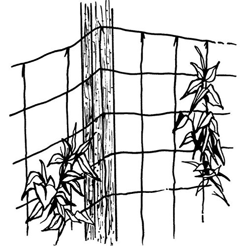 Luster Leaf 869 Vine and Veggie Trellis Net, Green, 5-Feet by 30-Feet by Luster Leaf (Image #1)