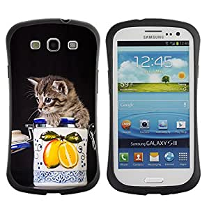 Paccase / Suave TPU GEL Caso Carcasa de Protección Funda para - Cute Cat Kitten In A Jar - Samsung Galaxy S3 I9300