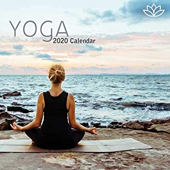 Amazon.com : Turner Photo Yoga 2020 12X12 Photo Wall ...