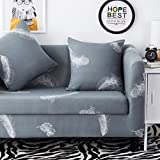 HYSENM 1/2/3/4 Seater Sofa Cover European Style Home Décor Stretch Elastic Protector Washable Durable Dust Proof Soft Sofa Slipcover Couch Cover Easy Fit, Feather 2 seater 140-185cm