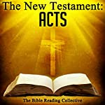 The New Testament: Acts |  The New Testament