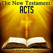 The New Testament: Acts Audiobook by  The New Testament Narrated by  The Bible Reading Collective