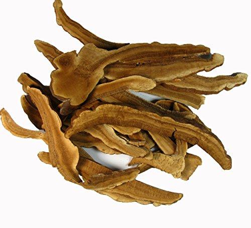Greenhilltea Reishi Mushroom Product of Japan - Ganoderma lucidum Loose Slices 8 OZ