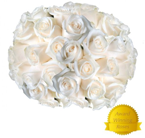 Flowers for delivery on Amazon Bouquet of 25 WHITE Fresh Roses Delivered with Free Flower Food Packet. Long