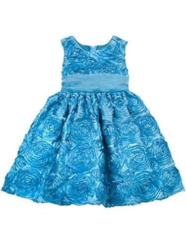 Rare Editions Toddler Girl Easter Spring Soutache Dress (2t-4t) (3t)