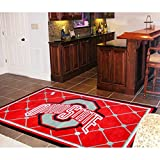 Ohio State Buckeyes NCAA Floor Rug (60''x96'')