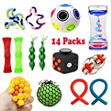14 Pack Bundle Sensory Toys-Fidget Cube/Bike Chain/Liquid Motion Timer/Rainbow Magic Balls/Twisted Fidget Toys/Mesh And Marble Toy/Soybeans Squeeze Grape Ball/Stretch Toy for ADD ADHD Stress Relax
