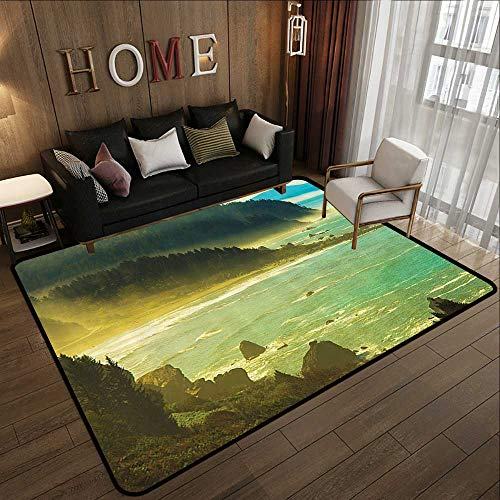 Bathroom mats and Rugs,Americana Landscape Decor,Foggy Redwood Pacific Ocean in Mist Windy Day Crescent Shore Picture,Green 47