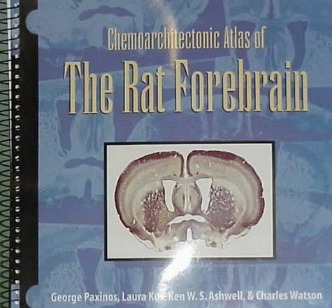 Chemoarchitectonic Atlas of the Rat Forebrain