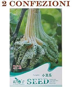 ❦ 12 Semillas Totales - 2 Paquetes con 6 Semillas de Calabaza Cada Cucurbita Linn Vegetable Vegetable Vegetable Pumpkin Vegetable