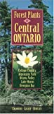 Forest Plants of Central Ontario, Brenda Chambers and Karen Legasy, 1551050617